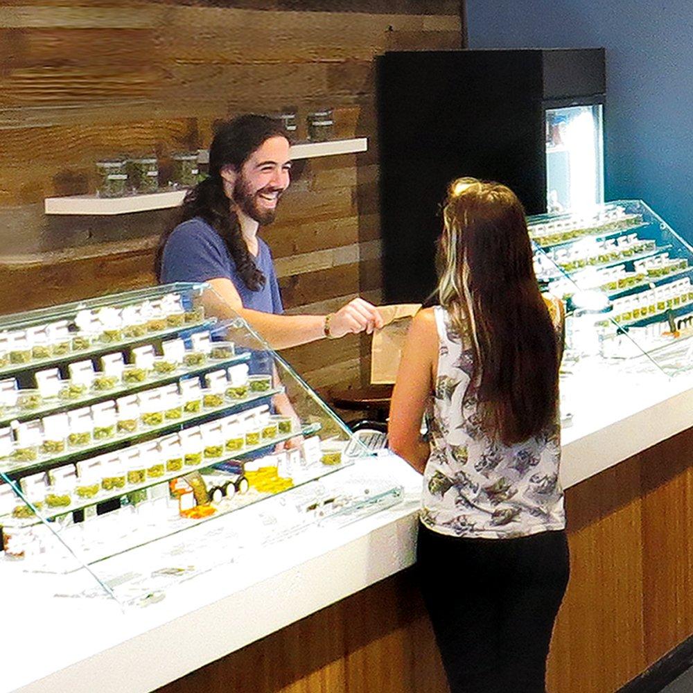 Online Cannabis Consultant certification program at SCCOBS Santa Cruz Center of Botanical Studies